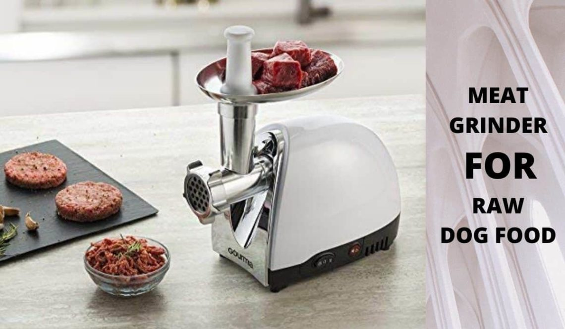 best meat grinder for raw dog food.