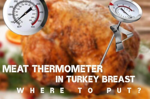 Where to Put Meat Thermometer in Turkey Breast