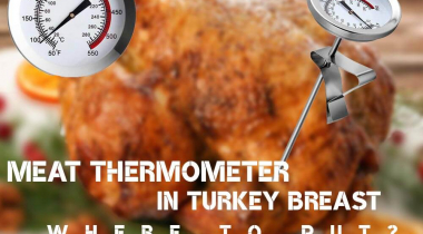 Where to Put Meat Thermometer in Turkey Breast?